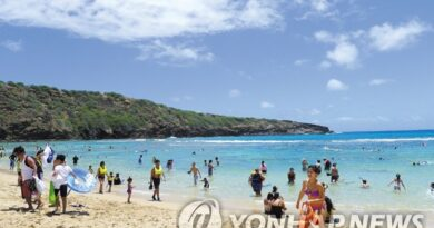 하와이 하늘길 다시 열린다…대한항공 11월 운항 재개